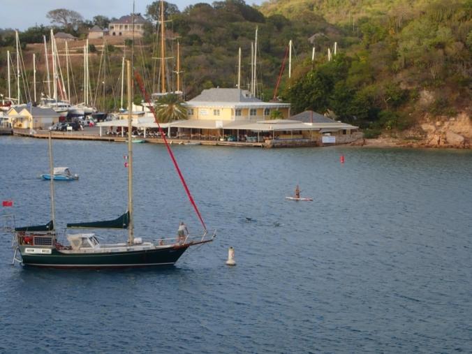 dauphins, Antigua